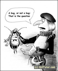 Software Testing: A bug or not a bug