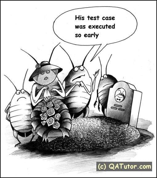 QA Test cases.