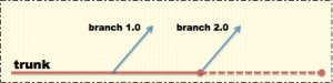 Software release branch and trunk for qa testing
